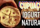 Cupuaçu o Iogurte da Mãe Natureza